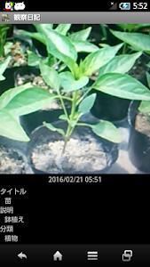 観察日記 screenshot 4