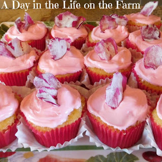 Rose and Ginger Cupcakes.