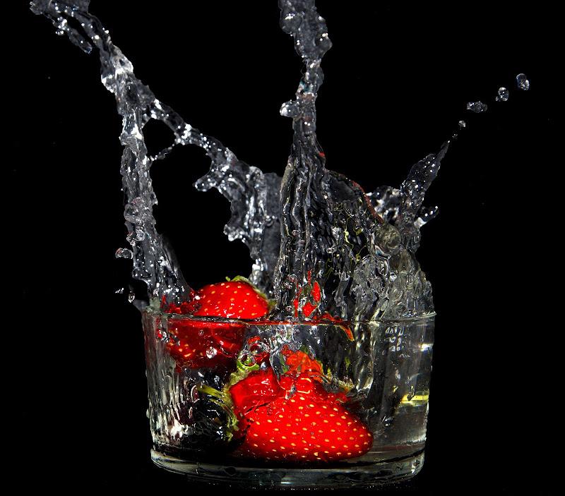 Red Splash di Primula Vico