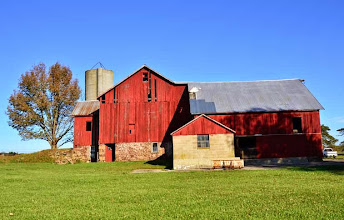 Photo: Spring Run Farm