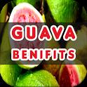 Guava Benefits icon