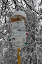 Photo: Na hrebeni Nitrických vrchov sa dostávam na červenú značku