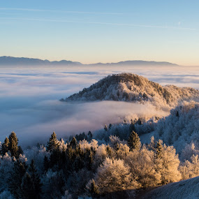 Foggy island by Matic Cankar - Landscapes Weather ( hill, foggy, winter, fog, ice, frost, morning,  )