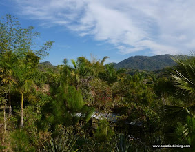 Photo: We spent out final morning birding at Vallarta Botanical Gardens, near Mismaloya, Jalisco