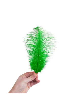 Plym, liten 25-28cm grön