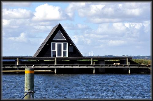Photo: dock yard part II