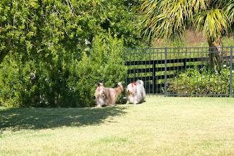 Photo: Neela and Demmi explore the grounds