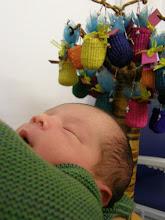 Photo: Under his birth tree