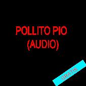 pollito pio (audio)