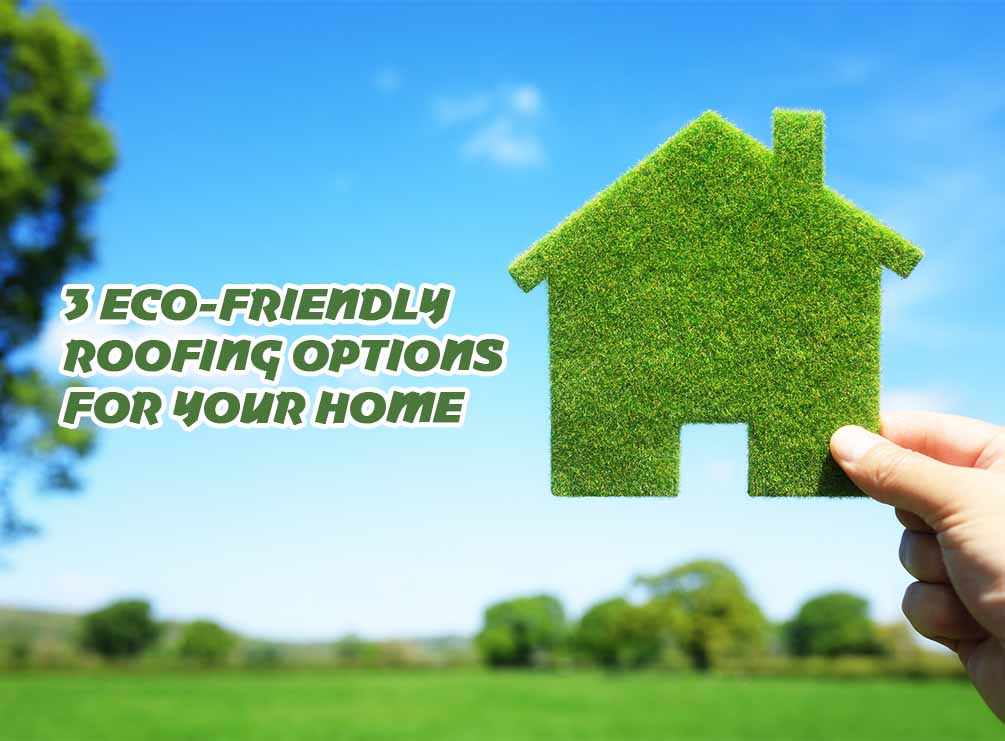Options For Your Home