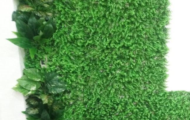 Sự thịnh hành của cỏ sân vườn là xu thế của các nước ngày nay