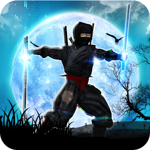 Ninja Assassin Fighting Shadow Survival Challenge