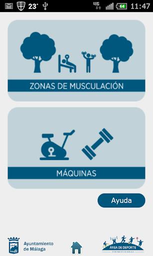 Zonas de Musculación
