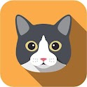 Free Funny Cats Video icon