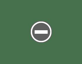 Photo: White flowers