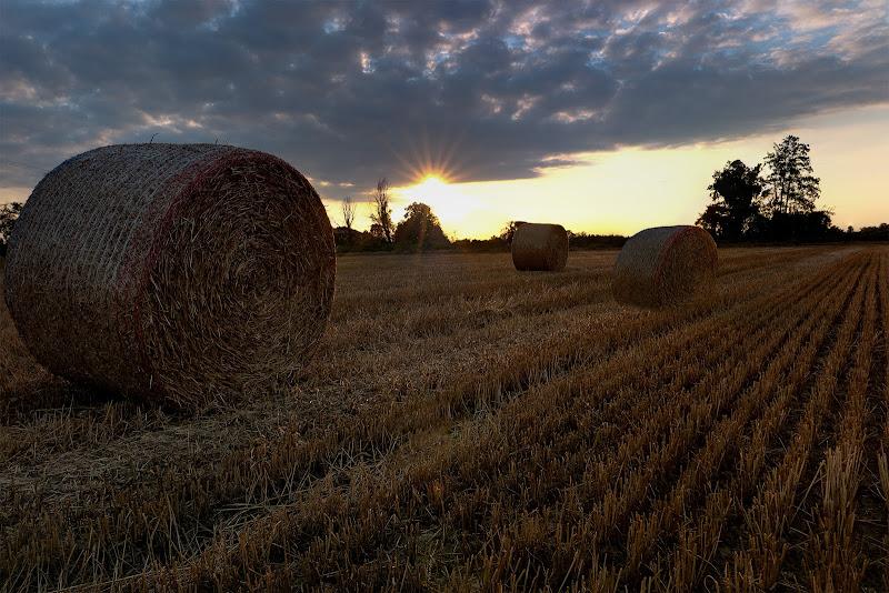tramonto sul campo di angelo27
