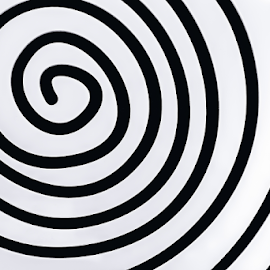 Simple white spiral on black background by Roberto Sorin - Abstract Patterns ( symbol, curl, color, curve, line, concept, isolated, pattern, simple, office, space, empty, illusion, modern, white, loop, design, decoration, graphic, element, digital, art, green, backdrop, business, motion, shape, wallpaper, nature, texture, black, spiral, abstract, creative, plexiglas, swirl, blue, form, closeup, light, background, fractal, monochrome, geometry, illustration, style, circle, object,  )