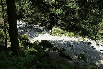 円原川1(水がない)