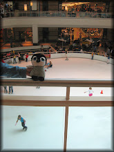 Photo: The indoor ice skating rink in the mall in Florida.