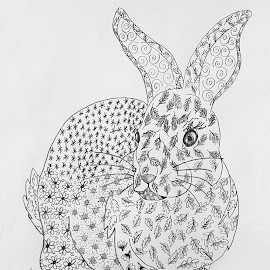 Zen Rabbit by Ingrid Anderson-Riley - Drawing All Drawing
