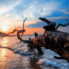 by Abhi Yasa - Landscapes Sunsets & Sunrises
