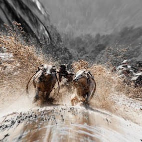 gigik liakkkkkkkkkkk by Taufik T KamaMoto - Sports & Fitness Rodeo/Bull Riding