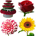 Flowers Stickers 2020 for WhatsApp - WAStickerApps icon