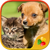 Dogs vs Cats: Kid Puzzle Games