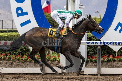 Win Here (Breathless Storm) se queda con el Clásico Luis Rosselot Bordeu (2000m-Arena-HCH).