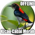 Suara Pikat Burung Cabai icon