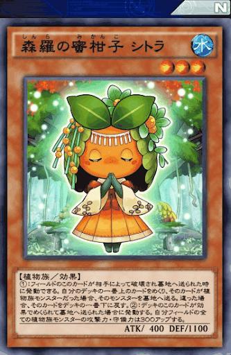 森羅の蜜柑子シトラ
