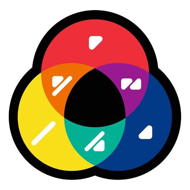 Escolas de Lamego acolhem rastreios de identificação de cores