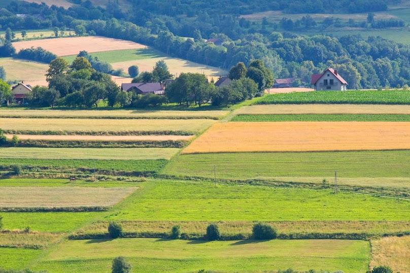 Odrolnienie działki rolnej krok po kroku