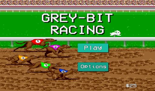 Grey Bit Racing