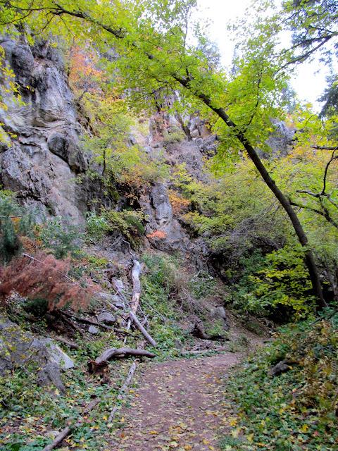 Thayne Canyon