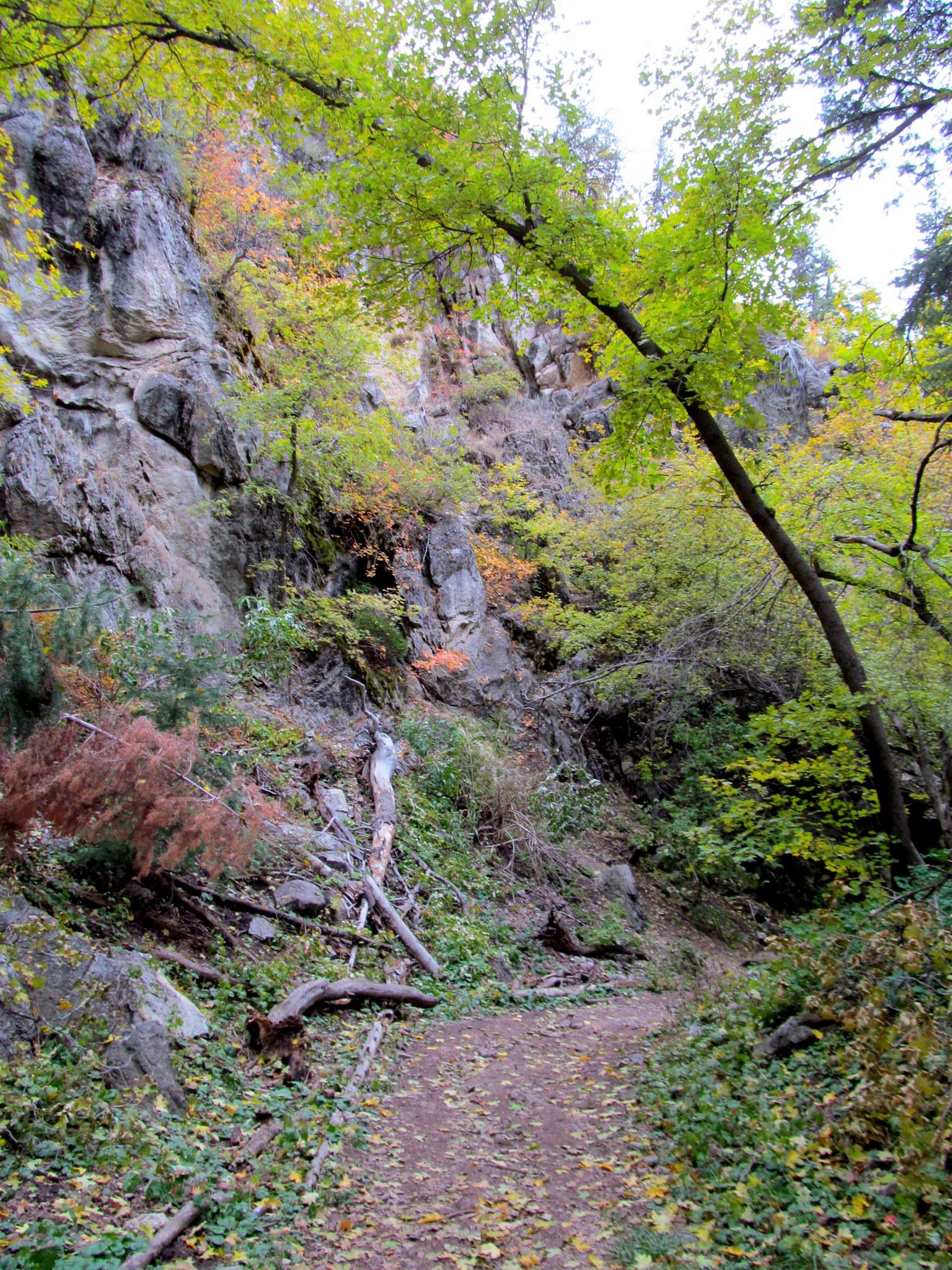 Photo: Thayne Canyon