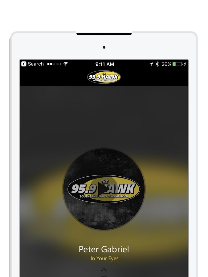 95.9 The Hawk- screenshot