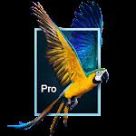Parallax 3D Effect Wallpaper Pro Icon