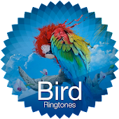 Bird ringtones & sounds