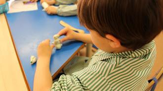 Los colegios privados presentan una amplia y enriquecedora oferta académica.