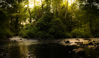 Photo: Evening by the river Assabet River - Northborough, MA  #365project curated by +Simon Kitcher+Patricia dos Santos Patonand +Vesna Krnjic  #landscapephotography curated by +Margaret Tompkins+Carra Riley+paul t beard+Ke Zengand +David Heath Williams