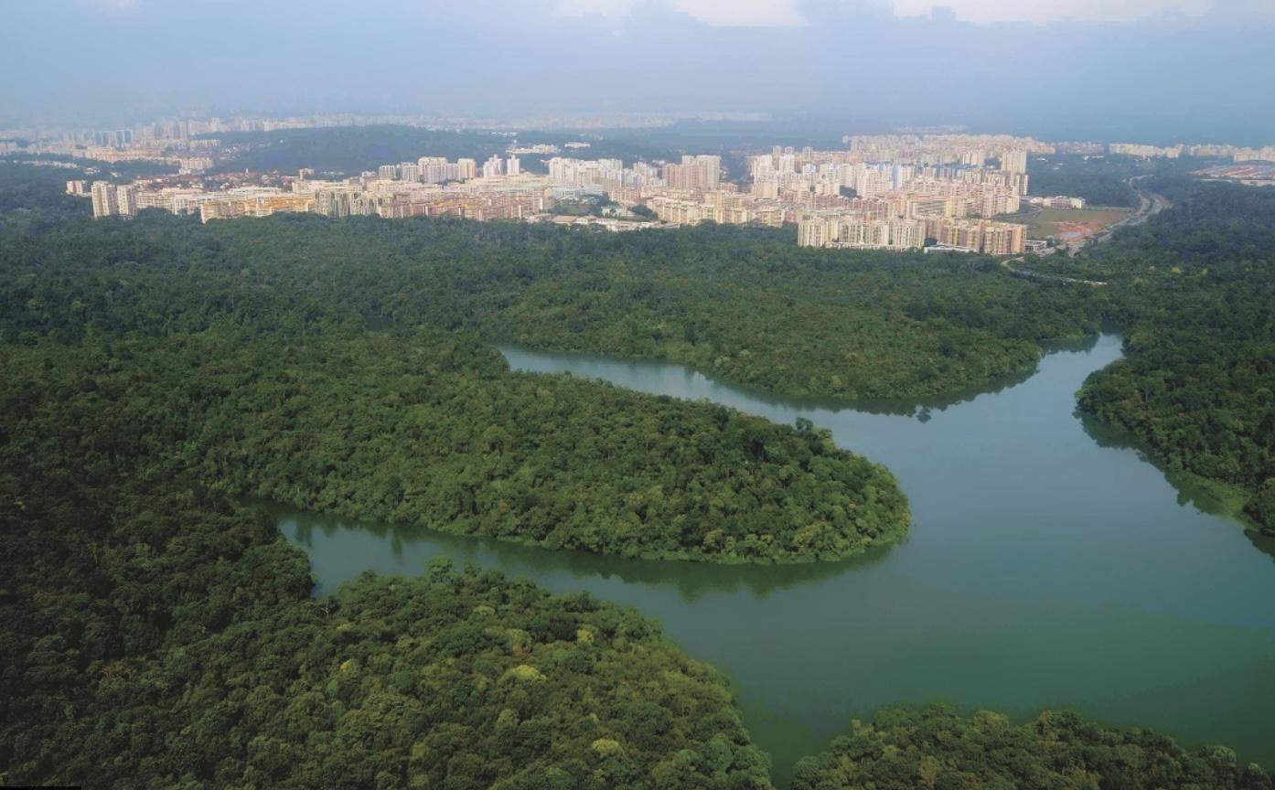 central catchment nature reserve