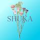 Download 鎌ヶ谷市のリラクゼーションサロン Shuka For PC Windows and Mac 2.14.1