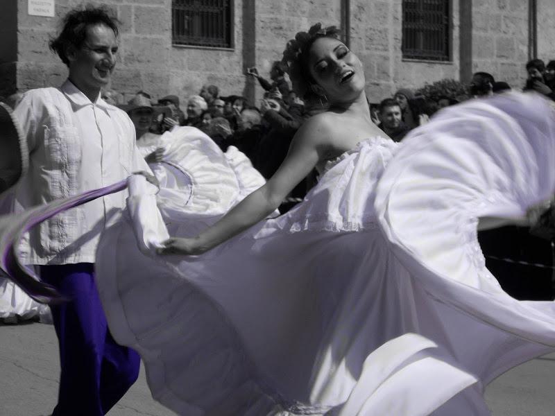 Sicily....Mandorlo in fiore. di Miry