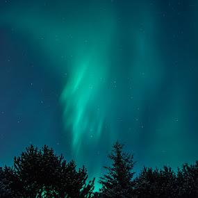 Aurora Borealis by Stefán Margrétarson - Landscapes Starscapes ( iceland, europe, stars, northern lights, aurora borealis, hafnarfjörður, night, evening )