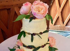 Rustic semi naked wedding cake