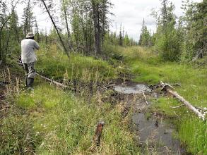 Photo: Идти можно только в болотниках.