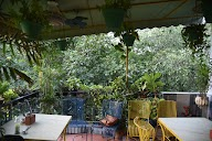 The Potbelly Rooftop Cafe photo 4