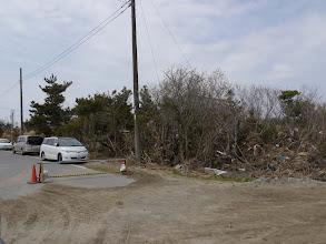Photo: 木の上の方にも津波で運ばれたものが引っかかっています。