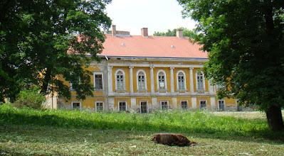 Photo: 0033 Putnoki Serényi-kastély (romos)